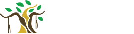 Banyan Group of Companies Ltd.